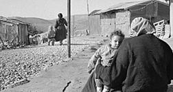 Retratos da Palestina