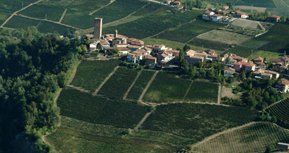 Angelo Gaja, o N° 1 do vinho na Itália