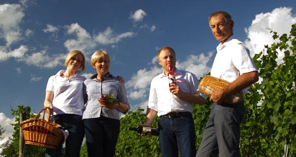 Austrian Wine Show Case