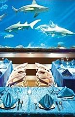 Eventos no SeaWorld