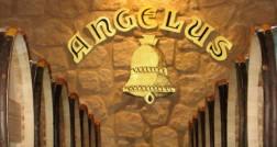 feat_angelus