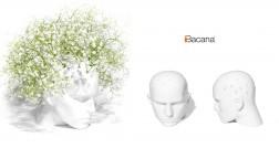 Vaso floreira