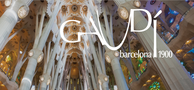 Instituto Tomie Ohtake comemora 15 anos com mega exposição catalã