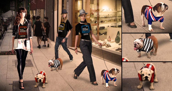 'Bulldog Fashion Walk'