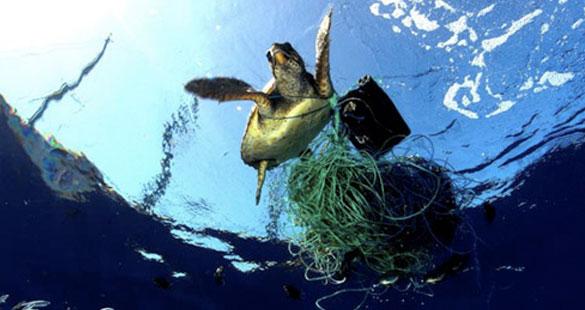 A problemática do lixo marinho