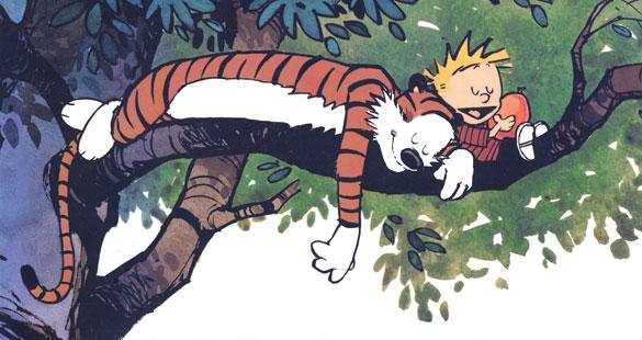 Calvin & Haroldo