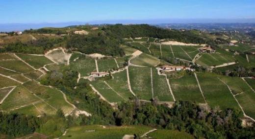 Visão aérea dos vinhedos de Nebbiolo de Domenico Clerico em Barolo