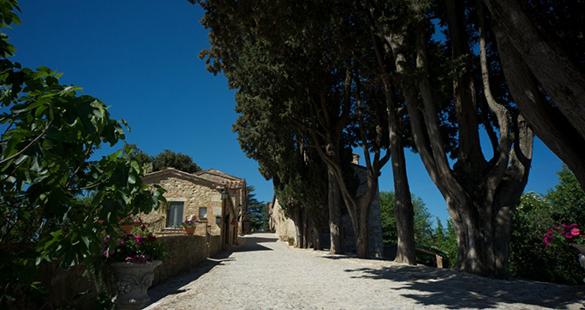 Participe de dois dos mais belos festivais da Toscana