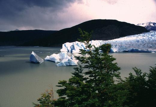 Lago & Glaciar Grey - Patagonia