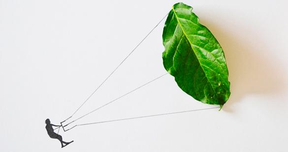Artista cria desenhos com folhas