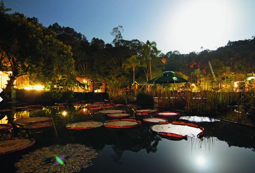 Unique Garden Hotel & Spa e suas ações sustentáveis